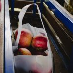 A grocery bag full of apples
